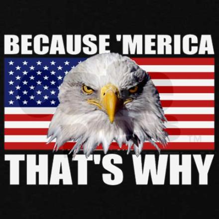 because_merica_thats_why_us_flag_american_eagle_sw