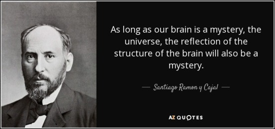 quote-as-long-as-our-brain-is-a-mystery-the-universe-the-reflection-of-the-structure-of-the-santiago-ramon-y-cajal-55-76-74