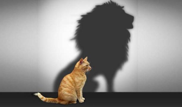self-esteem-self-confidence-healing